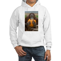 Orangutan with Pumpkin Hoodie