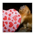 Tamarin With Valentines Gift Tile Coaster