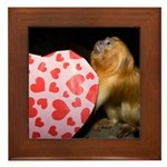 Tamarin With Valentines Gift Framed Tile