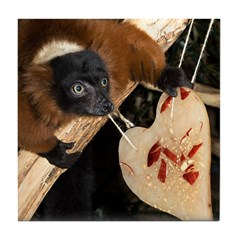 Red Ruffed Lemur with Heart Tile Coaster