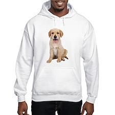 Golden Lab Puppy Hoodie
