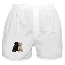 Black and White Labrador Puppies. Boxer Shorts