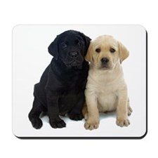 Black and White Labrador Puppies. Mousepad