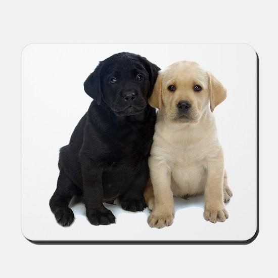 Black and White Labrador Puppies. Mousepad