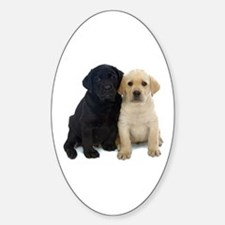 Black and White Labrador Puppies. Decal