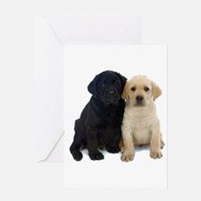 Black and White Labrador Puppies. Greeting Card