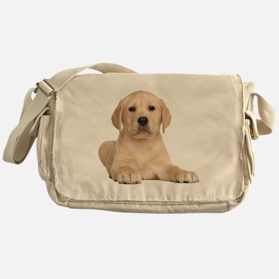 Golden Lab Messenger Bag