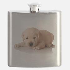 Golden Lab Puppy Flask