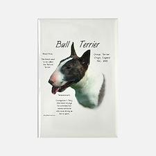 Bull Terrier (colored) Rectangle Magnet
