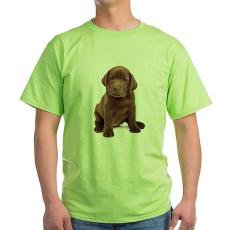 Chocolate Labrador Puppy. Green T-Shirt