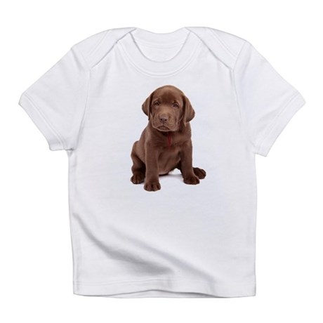 Chocolate Labrador Puppy. Infant T-Shirt