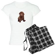 Chocolate Labrador Puppy. Pajamas