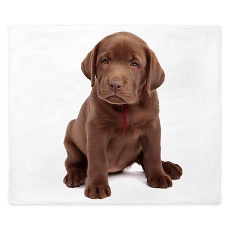 Chocolate Labrador Puppy. King Duvet