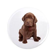 """Chocolate Labrador Puppy. 3.5"""" Button"""