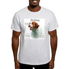 Brittany Ash Grey T-Shirt