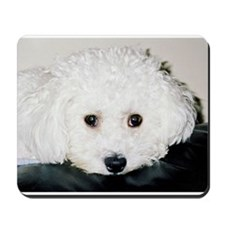 BICHON PUPPY FACE MOUSEPAD