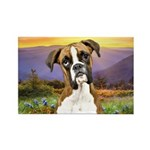 Boxer Meadow Rectangle Magnet