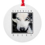 Husky Eyes Round Ornament
