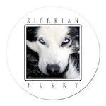 Husky Eyes Round Car Magnet