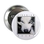 Husky Eyes 2.25