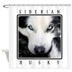 Husky Eyes Shower Curtain