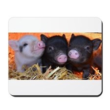 3 little micro pigs Mousepad