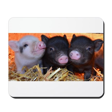 3 little micro pigs Mousepad