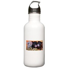 3 little micro pigs Water Bottle