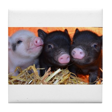 3 little micro pigs Tile Coaster
