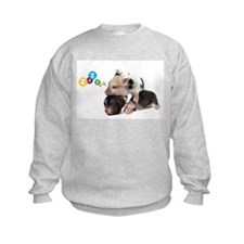 micro pigs sleeping Sweatshirt