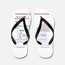 Fundamental Theorem of Calculus Flip Flops