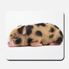 Micro pig sleeping Mousepad