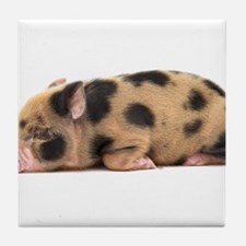 Micro pig sleeping Tile Coaster