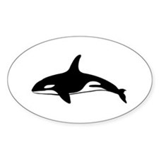 Killer Whale Oval Bumper Stickers
