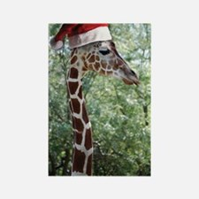 Christmas Giraffe Rectangle Magnet