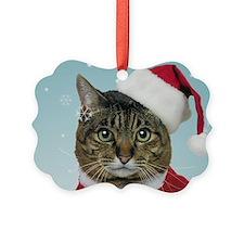 Santa Claws Ornament