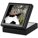 Porcupine With Soccer Ball Keepsake Box