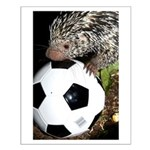 Porcupine With Soccer Ball Small Poster