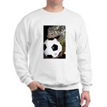 Porcupine With Soccer Ball Sweatshirt