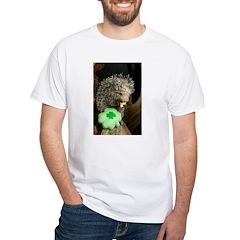 Porcupine with Shamrock Shirt