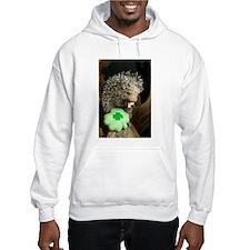 Porcupine with Shamrock Hooded Sweatshirt