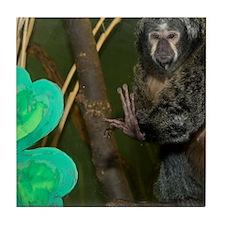 Monkey With Shamrock Tile Coaster
