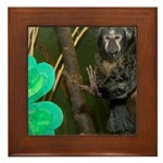 Monkey With Shamrock Framed Tile