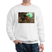 Elephant Shrew with Shamrock Sweatshirt