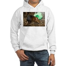 Elephant Shrew with Shamrock Hooded Sweatshirt
