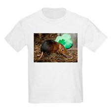 Elephant Shrew with Shamrock Kids Light T-Shirt