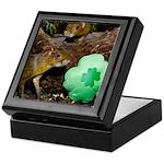 Agouti With Shamrock Keepsake Box