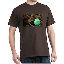 Agouti With Shamrock Dark T-Shirt