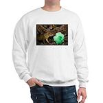 Agouti With Shamrock Sweatshirt