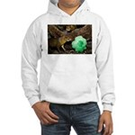 Agouti With Shamrock Hooded Sweatshirt